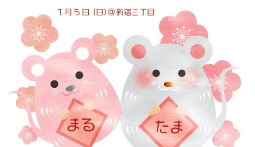 深瀬まる&天海玉紀✳︎1/5 新春おたのしみウラナイ鑑定会のお知らせ