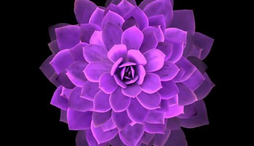 【参加募集】11/13(土)20(土)クレアボヤンス(透視)Zoom基礎講座